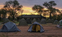 4 Days Tanzania Budget Camping Safari