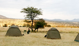 7 Days Tanzania Budget Camping Safari