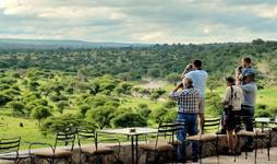 2 Days Tanzania Luxury Safari To Tarangire And Ngorongoro