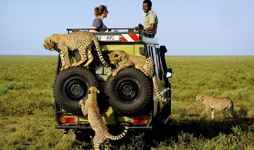 6 Days Tanzania Adventure Safari
