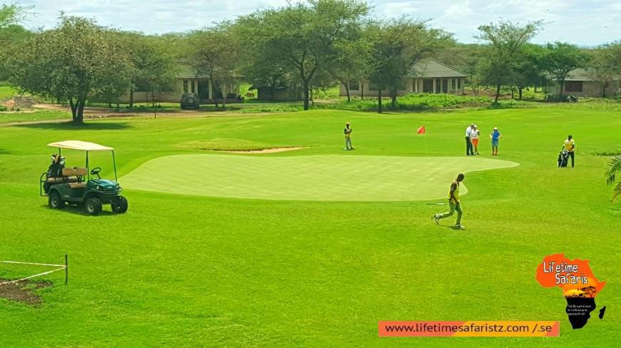 Best Time To Go On Tanzania Golf Safari