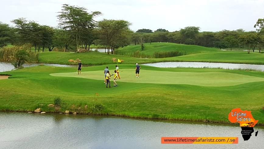 Where To Go For Enjoying Golf Safari In Tanzania