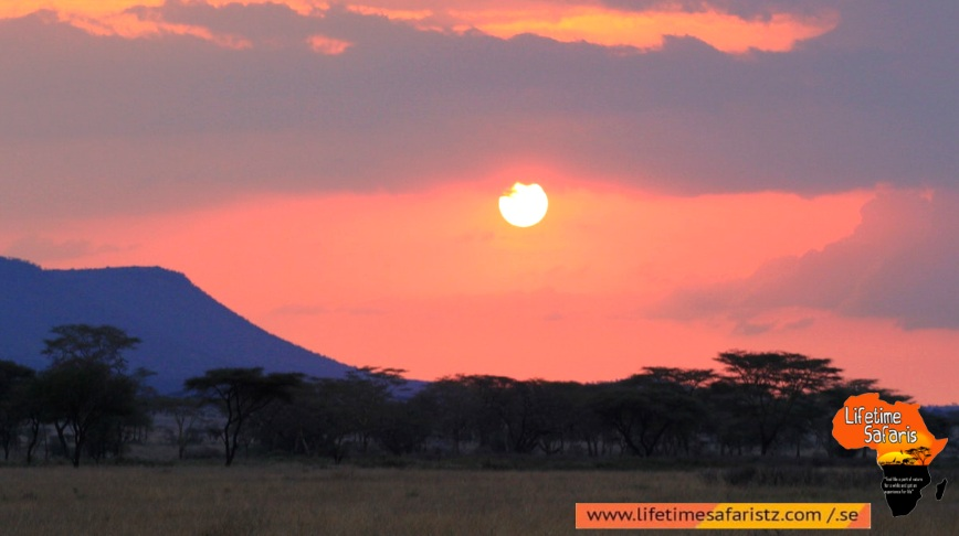Click The Amazing Scenery Of Sunrise And Sunset Of Tanzania