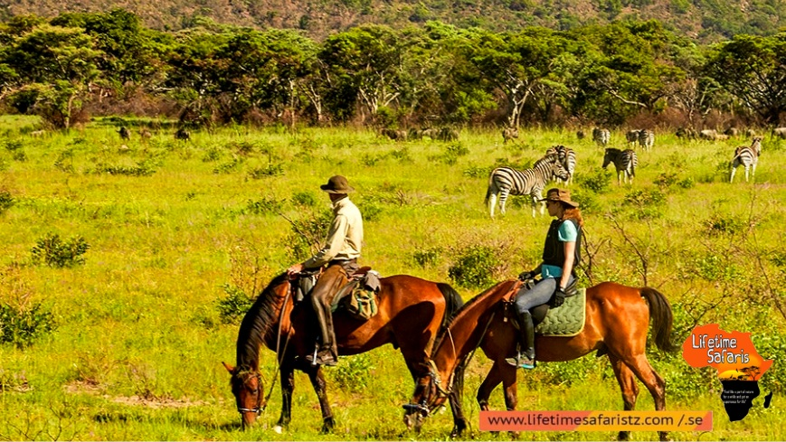 Speciality Of Horse Riding Safari Tanzania