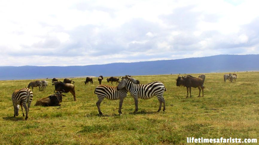 Hiking Small Heights – Ngorongoro Carter