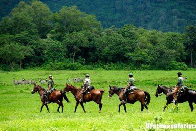 plan-your-dream-tanzania-family-safari-with-lifetime-safaris-featured