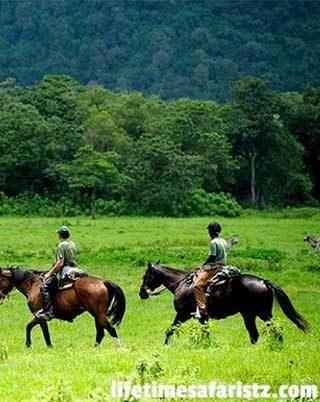 plan-your-dream-tanzania-family-safari-with-lifetime-safaris-home