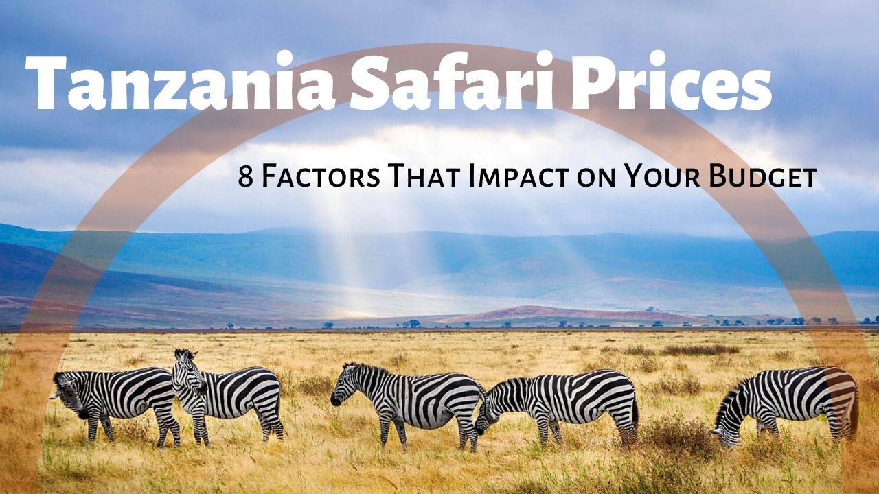 Tanzania Safari Prices