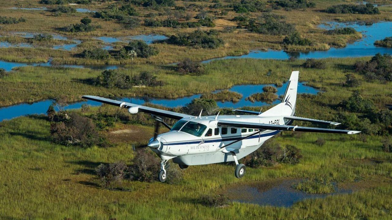 Fly in Safari
