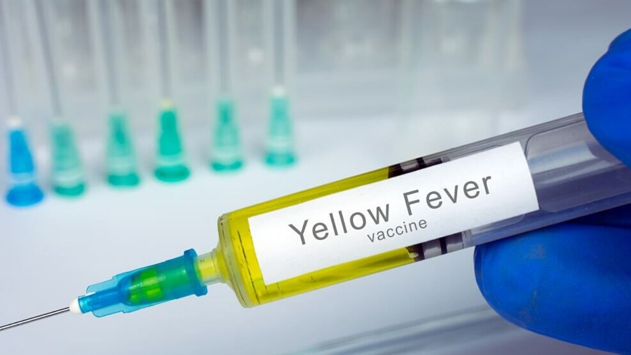 Yellow Fever Vaccination Requirements For Tanzania