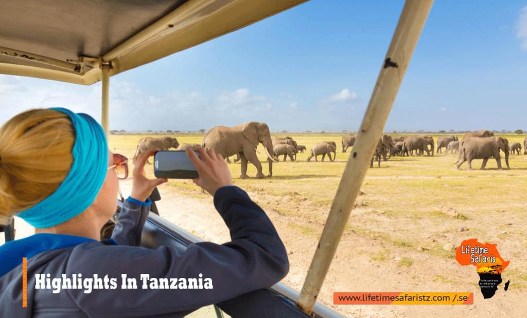 Highlights In Tanzania