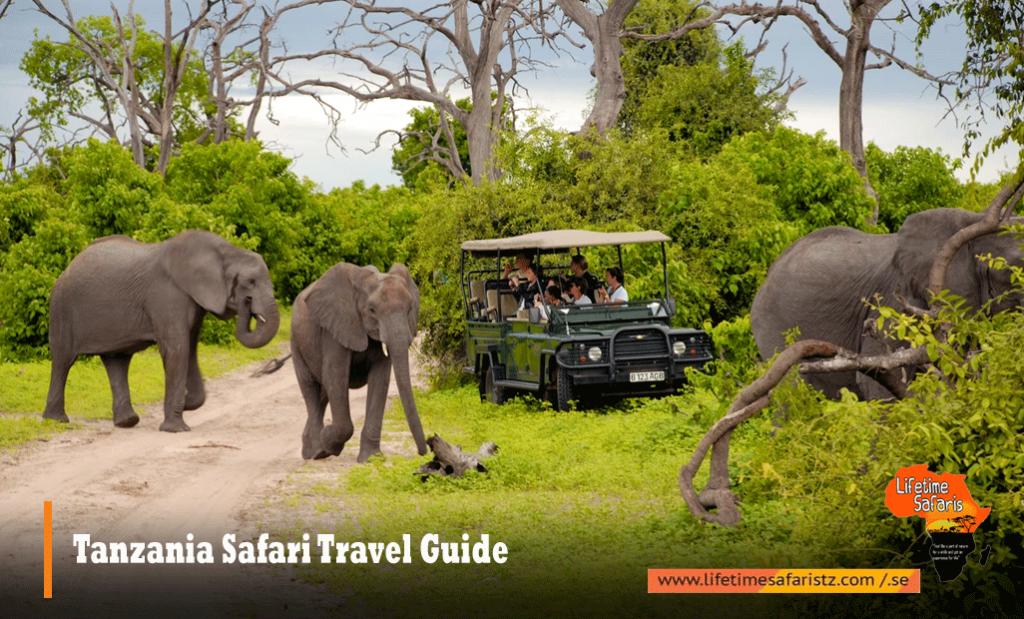 Tanzania Safari Travel Guide