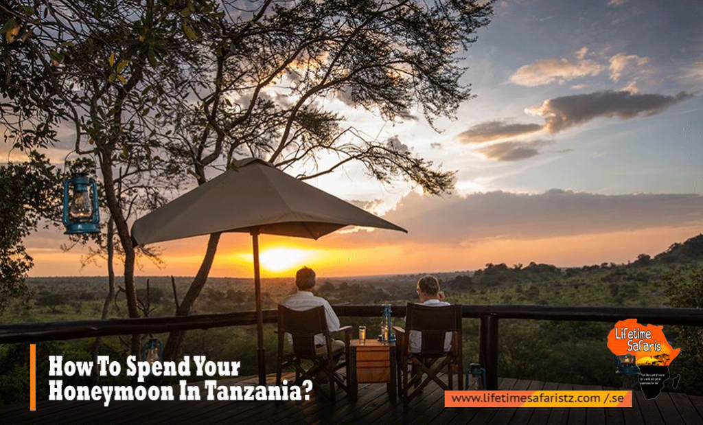How To Spend Your Honeymoon In Tanzania