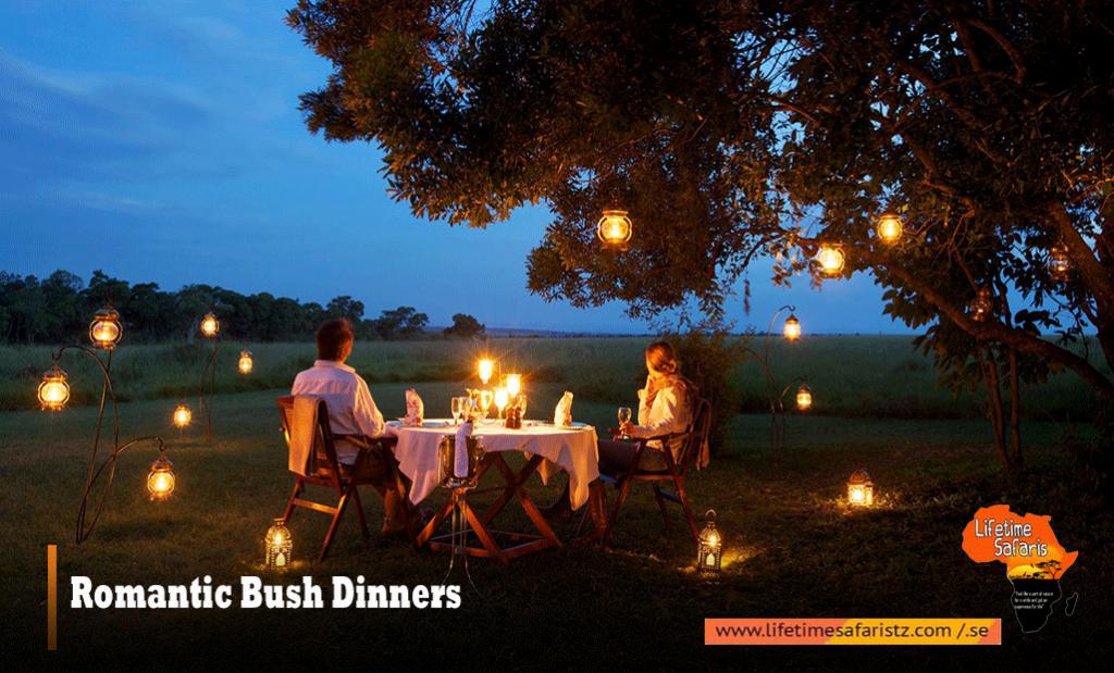 Tanzania Romantic Bush Dinners