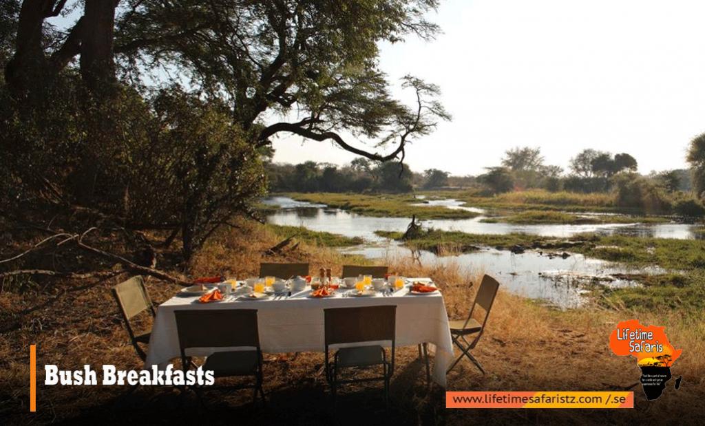 Tanzania Bush Breakfasts