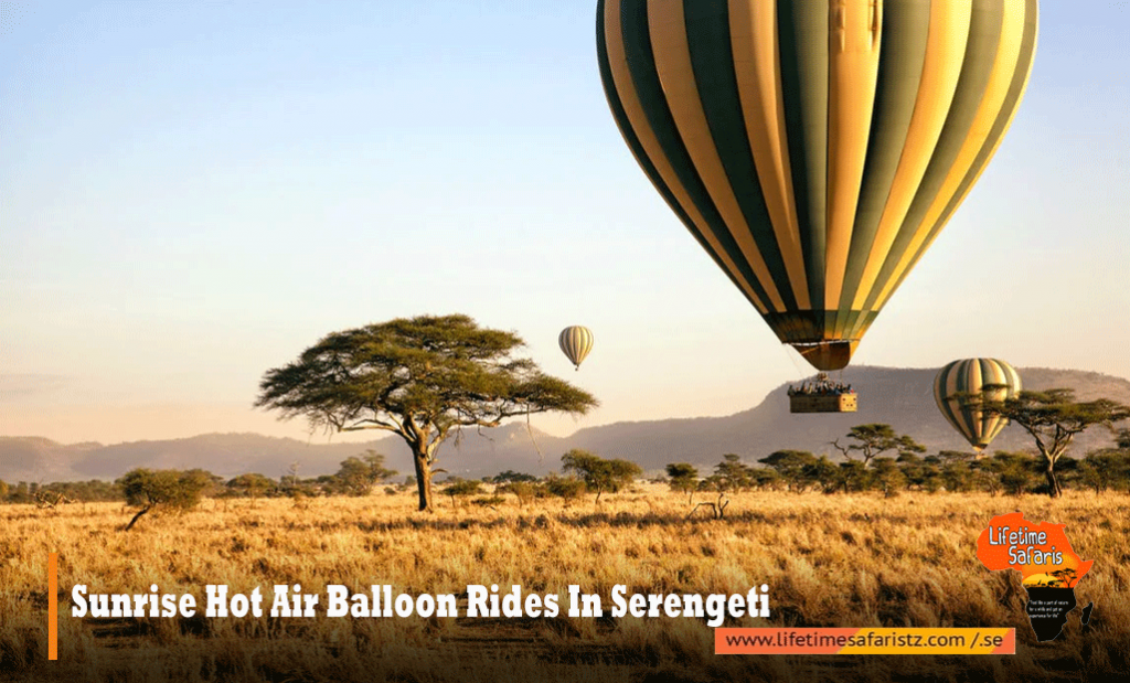 6. Sunrise Hot Air Balloon Rides In Serengeti