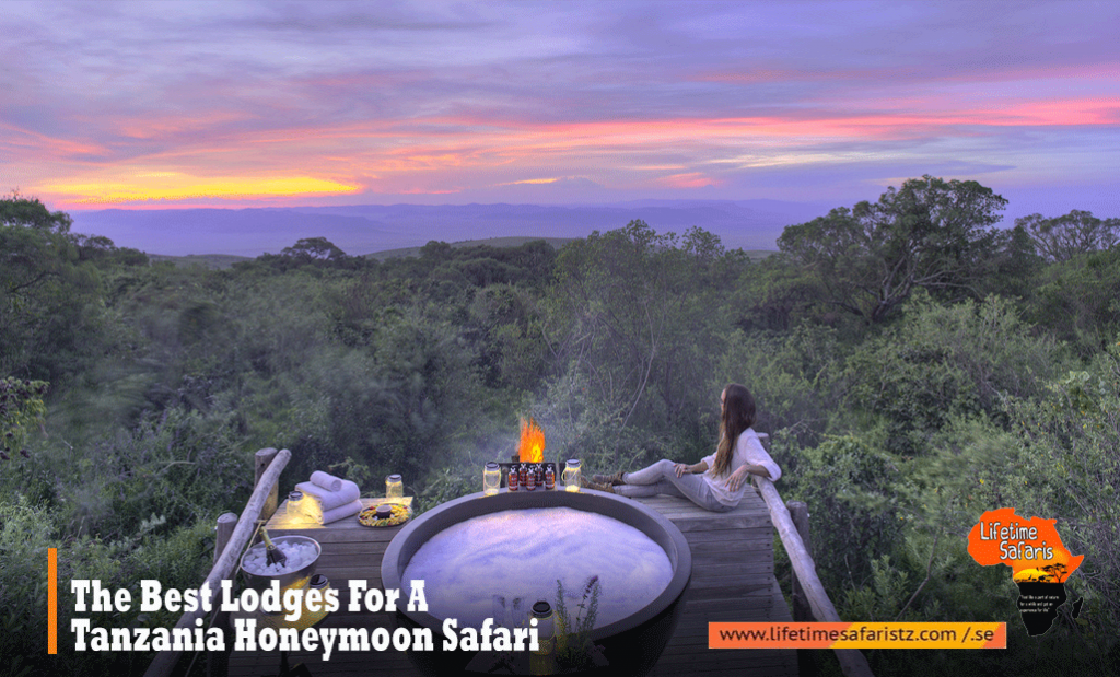 Best Lodges For A Tanzania Honeymoon Safari