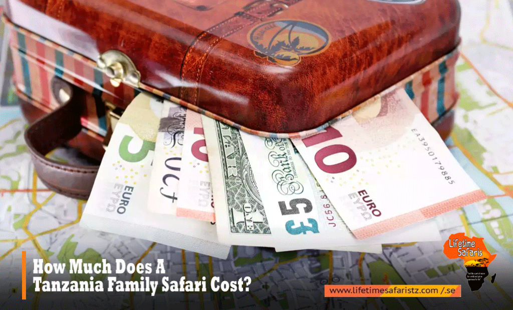How Much Does A Tanzania Family Safari Cost