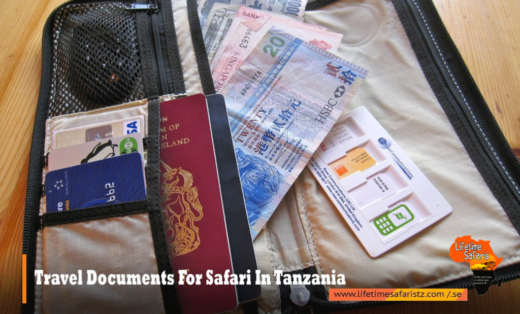 Travel Documents For Safari In Tanzania