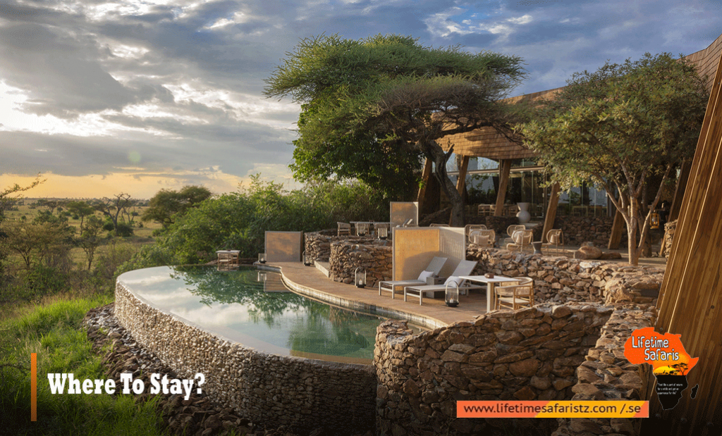 Where To Stay In Tanzania Luxury Safari