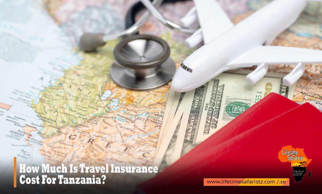 How Much Is Travel Insurance Cost For Tanzania