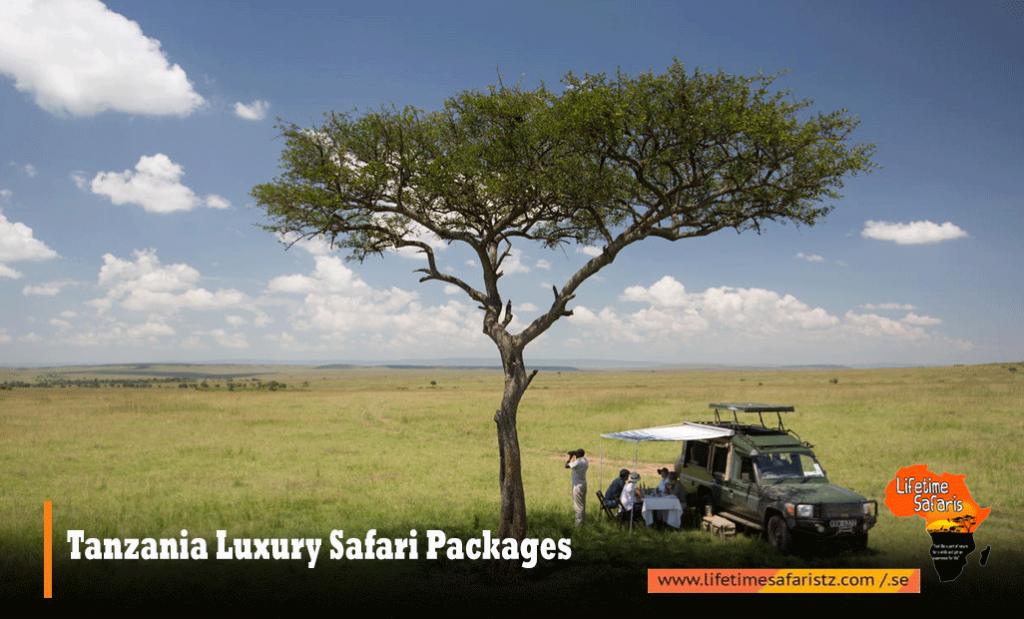 Tanzania Luxury Safari Packages