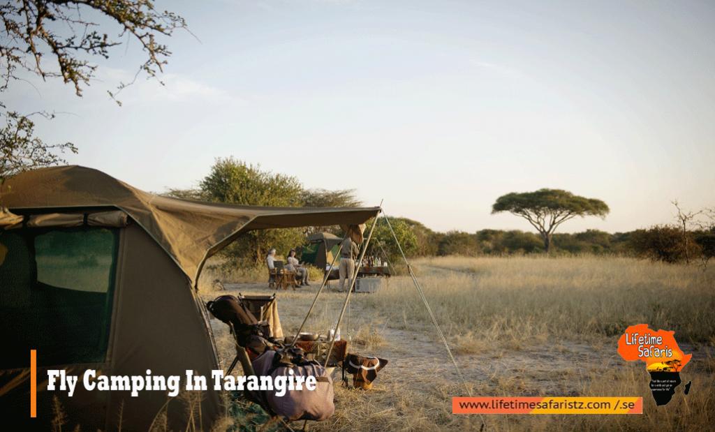 Fly Camping In Tarangire