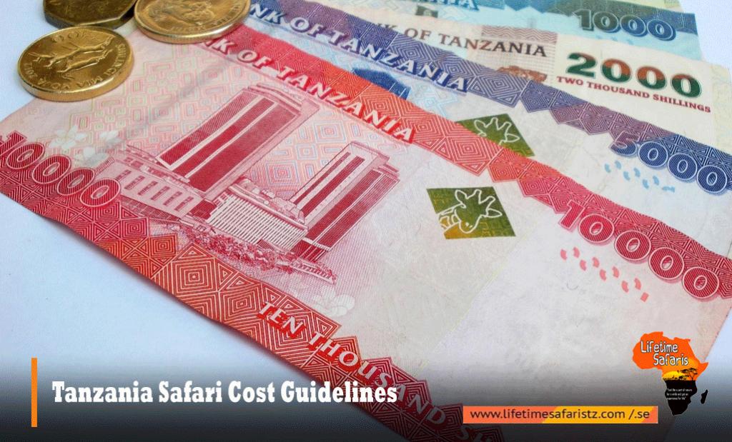 Tanzania Safari Cost Guidelines