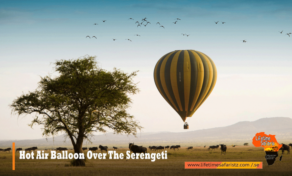 Hot Air Balloon Over The Serengeti