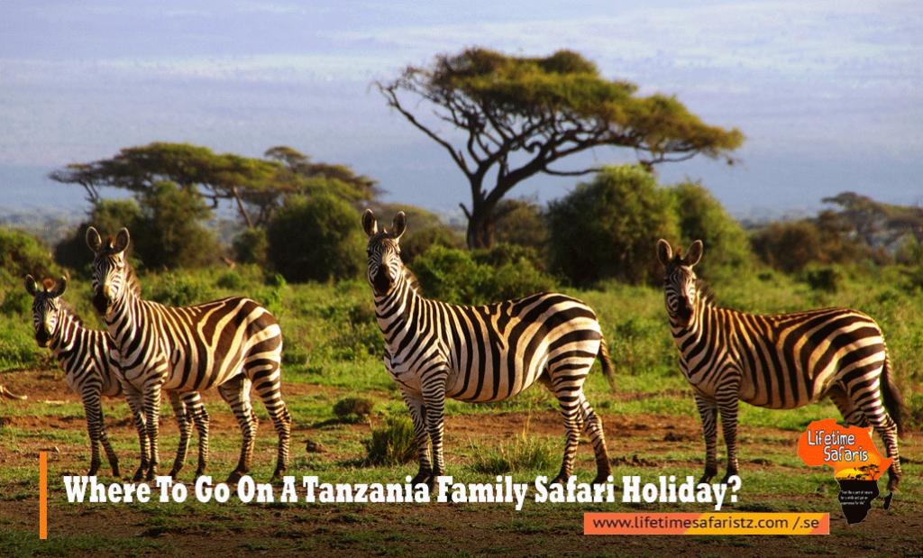 Tanzania Family Safari Holiday