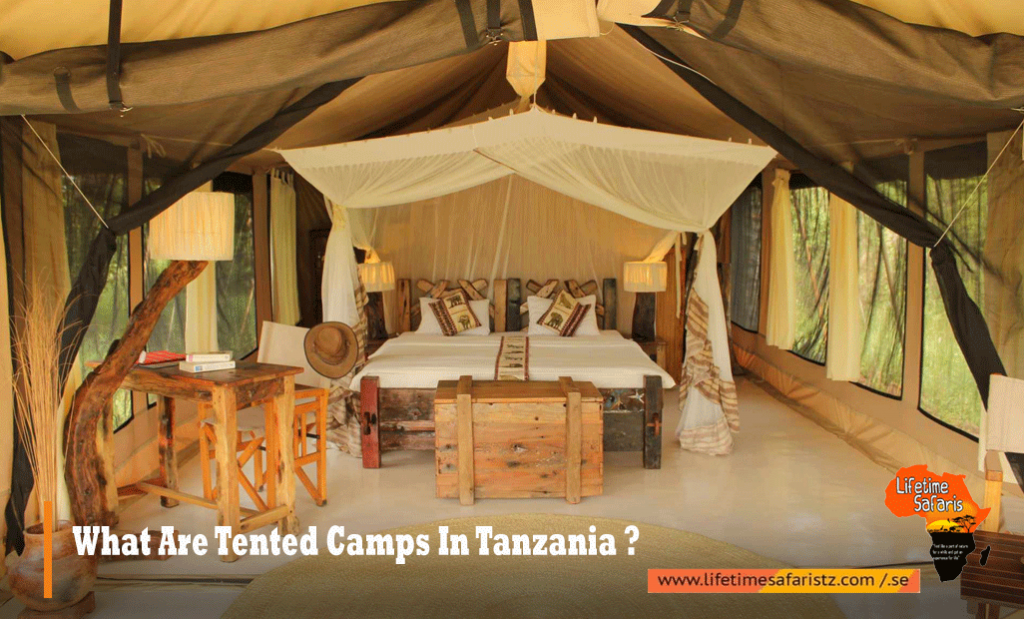 Tented Camps In Tanzania