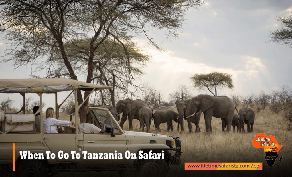 When-To-Go-To-Tanzania-On-Safari