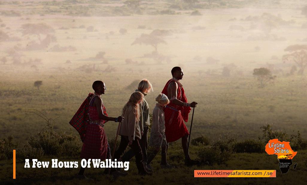 A Few Hours Of Walking