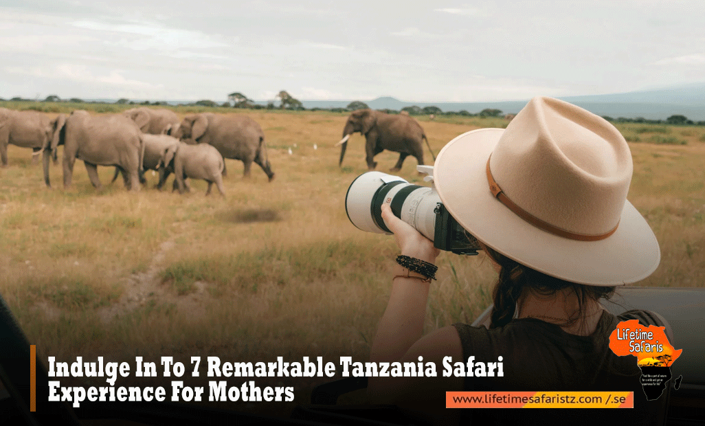 Indulge In To 7 Remarkable Tanzania Safari Experience For Mothers