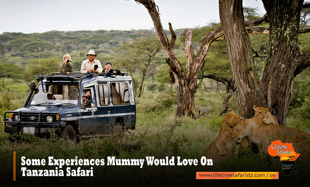 Some Experiences Mummy Would Love On Tanzania Safari