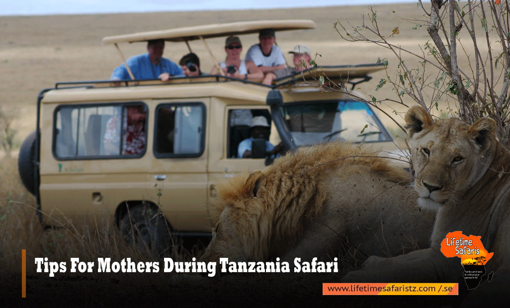 Tips For Mothers During Tanzania Safari