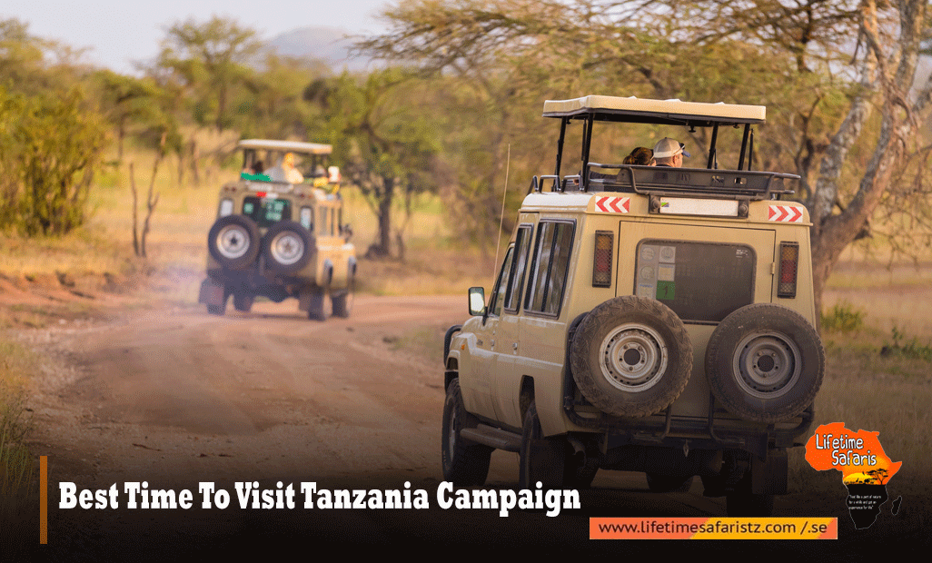 BEST TIME TO VISIT TANZANIA CAMPAIGN