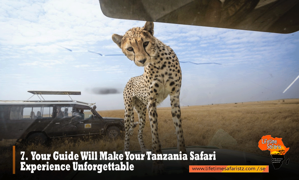 Private Safari Tanzania