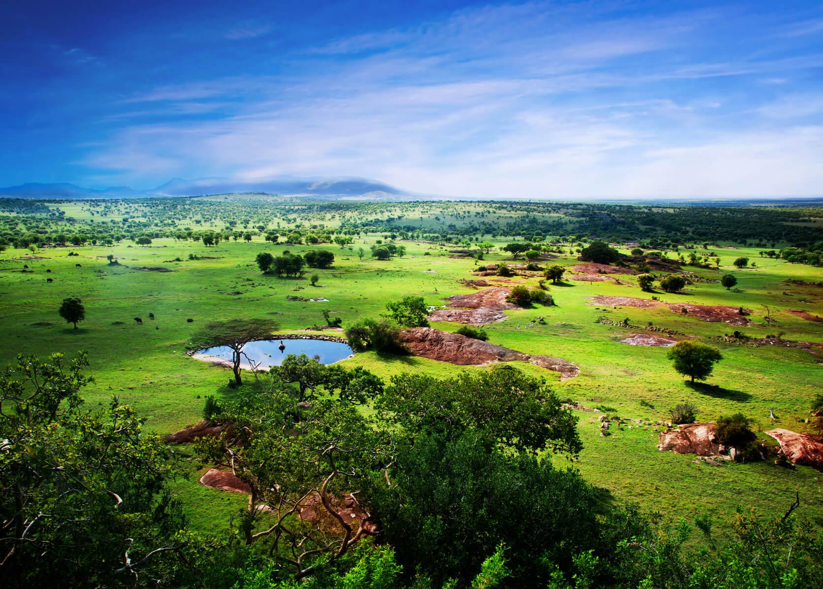 tanzania season