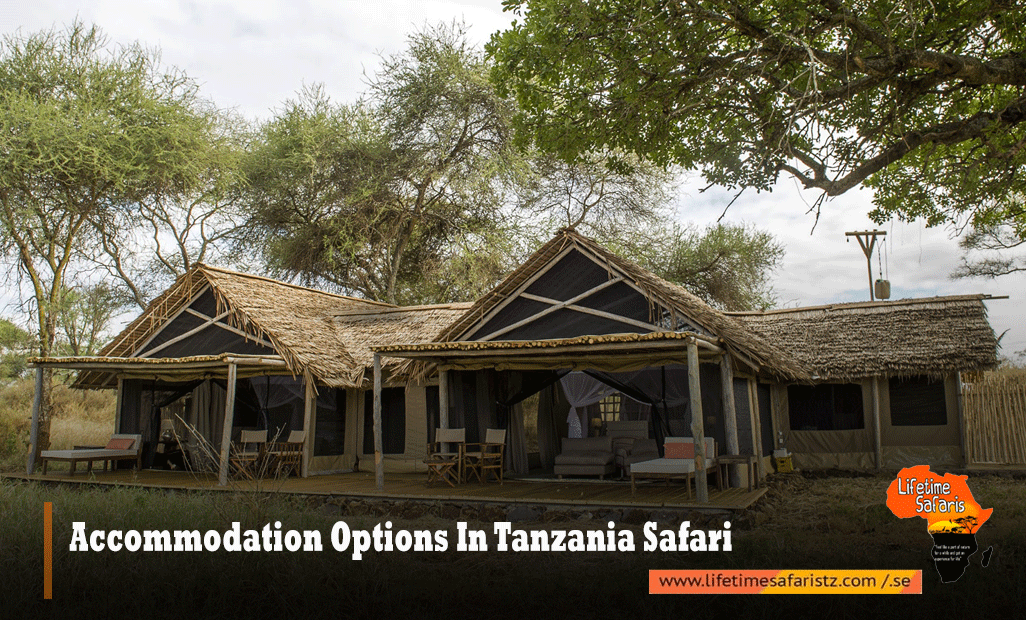 Accommodation-Options-In-Tanzania-Safari