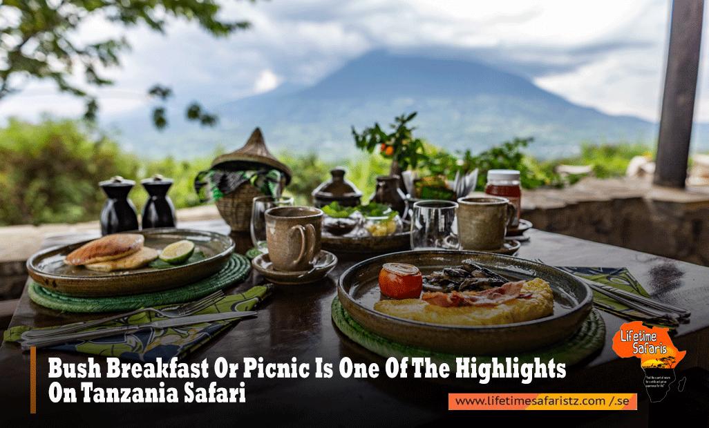 Bush Breakfast Or Picnic Is One Of The Highlights On Tanzania Safari
