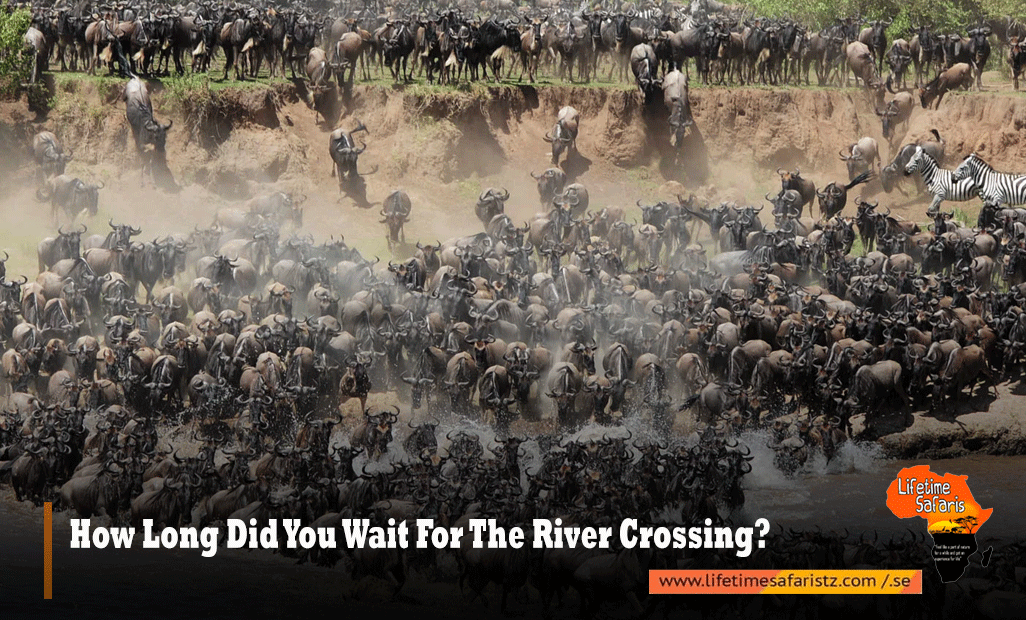 How Long Did You Wait For The River Crossing?