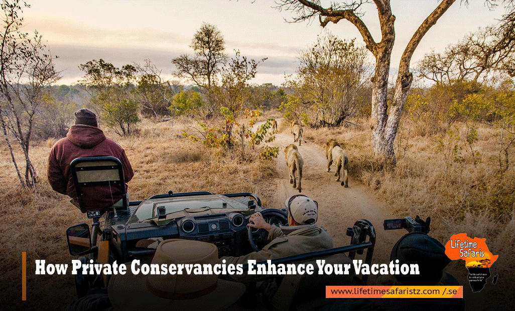 How Private Conservancies Enhance Your Vacation