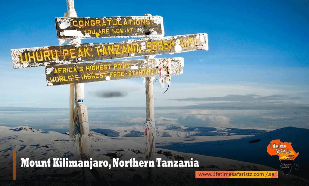 Mount-Kilimanjaro,-Northern-Tanzania