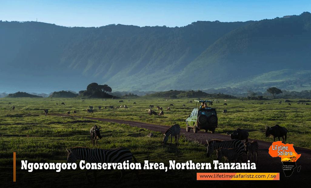 Ngorongoro-Conservation-Area,-Northern-Tanzania