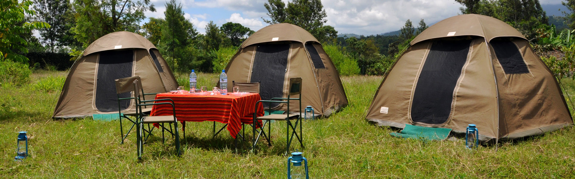 4 Days Tanzania Camping Safari