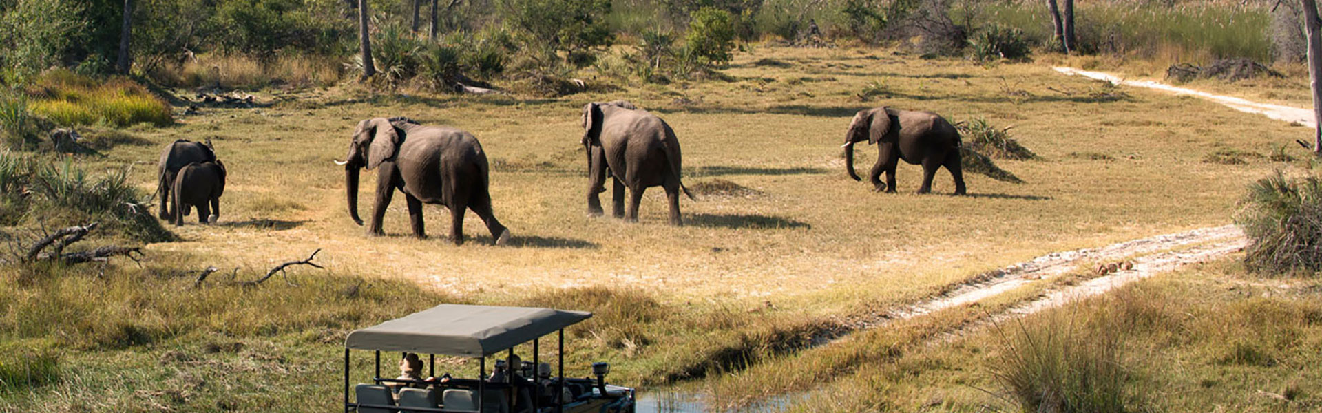 9 Days Tanzania Adventure Luxury Safari