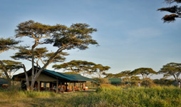 6 Days Tanzania Budget Camping Safari