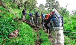 6 Days Tanzania Luxury Safari With Empakai Hiking