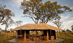 10 Days Tanzania Adventure Camping Safaris